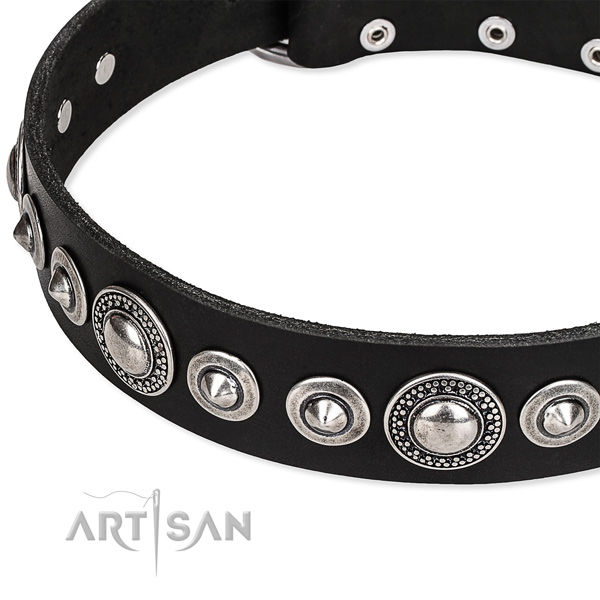 Walking embellished dog collar of reliable full grain genuine leather