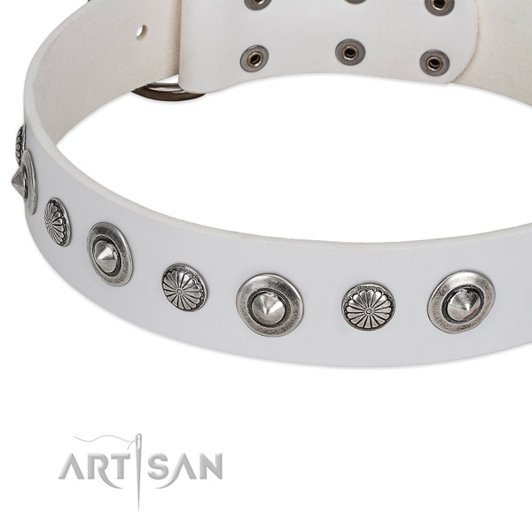 Natural leather collar with durable D-ring for your beautiful four-legged friend