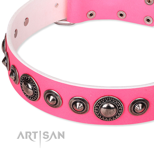Comfy wearing embellished dog collar of reliable full grain genuine leather