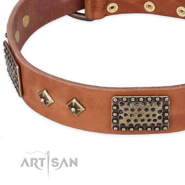 Corrosion resistant D-ring on natural leather dog collar for your doggie