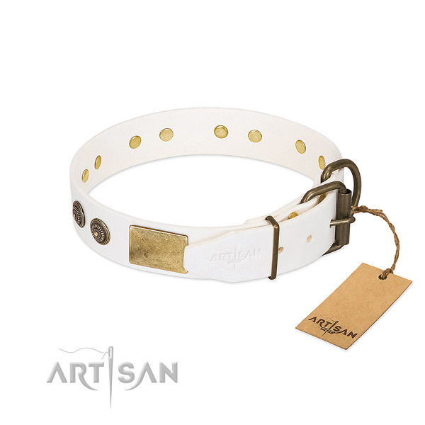 Rust-proof hardware on full grain genuine leather collar for walking your canine