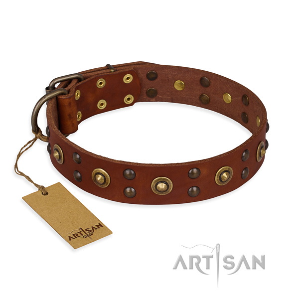 Studded full grain leather dog collar with reliable D-ring
