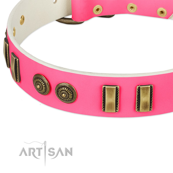 Durable traditional buckle on natural leather dog collar for your doggie