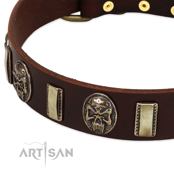 Rust resistant buckle on genuine leather dog collar for your four-legged friend