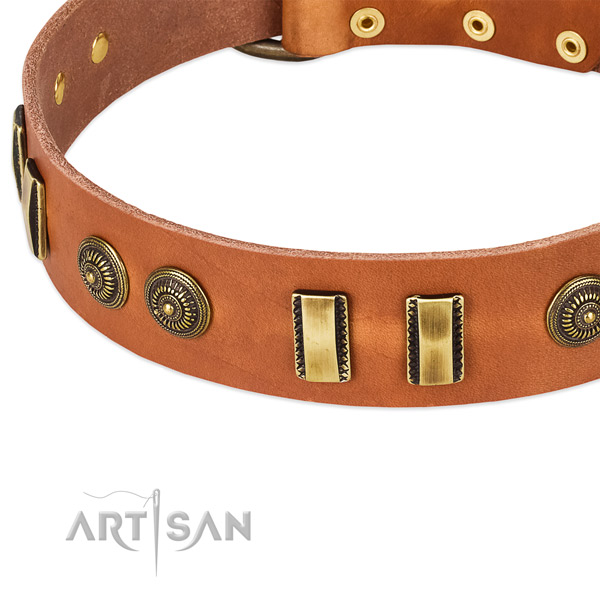 Reliable studs on leather dog collar for your canine