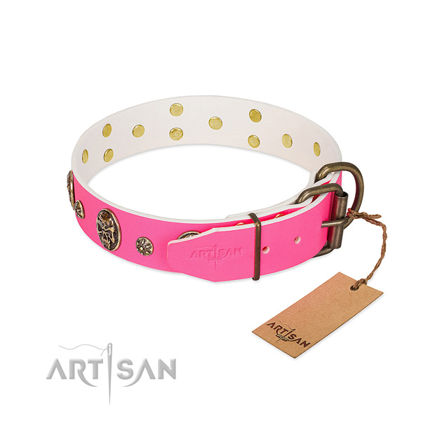 Reliable fittings on full grain leather collar for basic training your dog