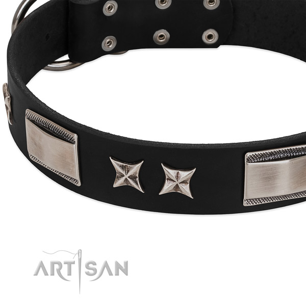 Top notch leather dog collar with reliable buckle
