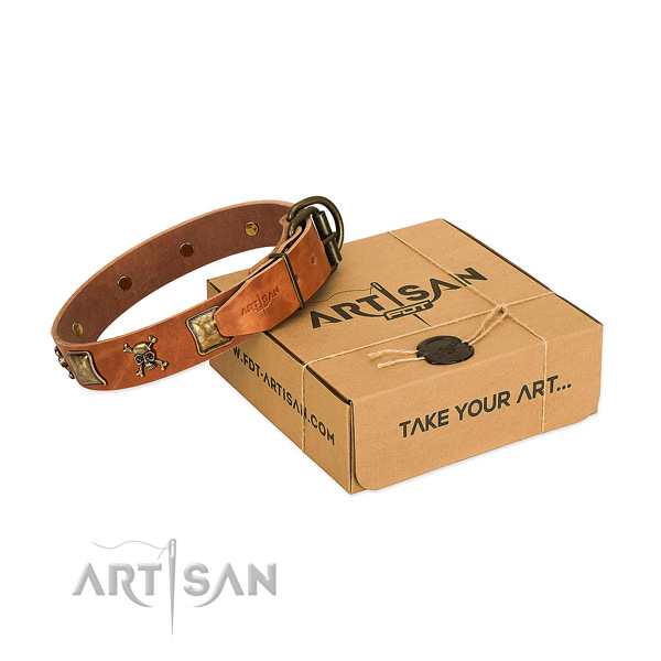 Amazing full grain natural leather dog collar with rust resistant adornments
