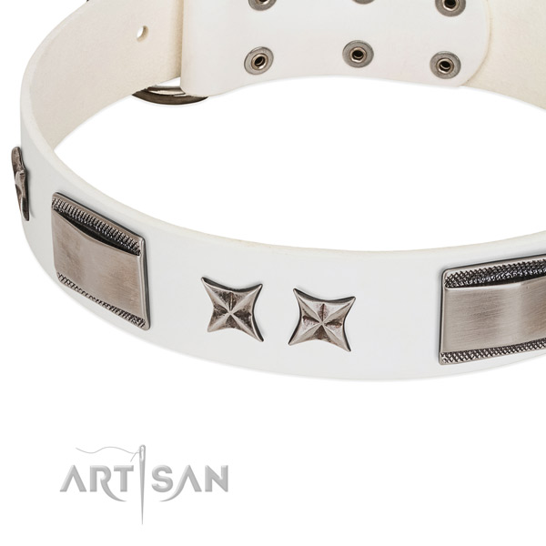 Best quality full grain natural leather dog collar with corrosion resistant fittings