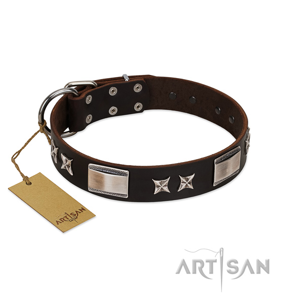 Significant dog collar of full grain genuine leather