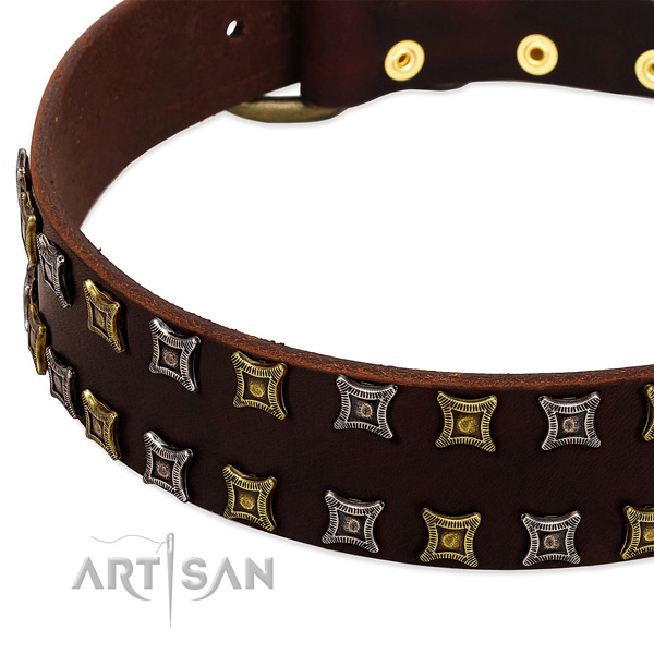 Strong full grain leather dog collar for your lovely canine