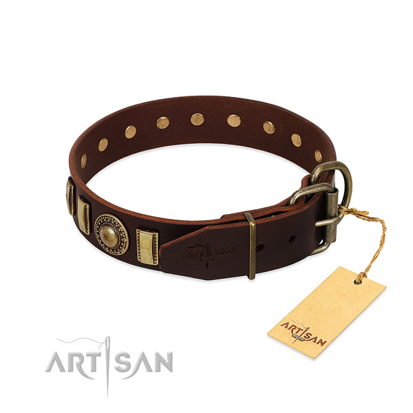 Incredible leather dog collar with reliable buckle