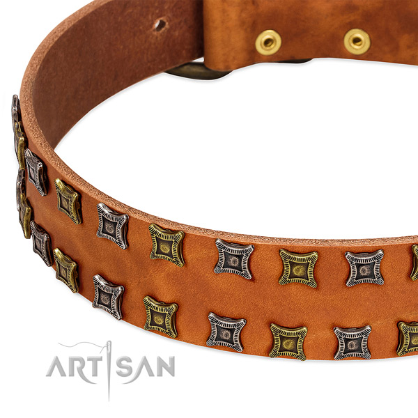 High quality full grain natural leather dog collar for your attractive four-legged friend