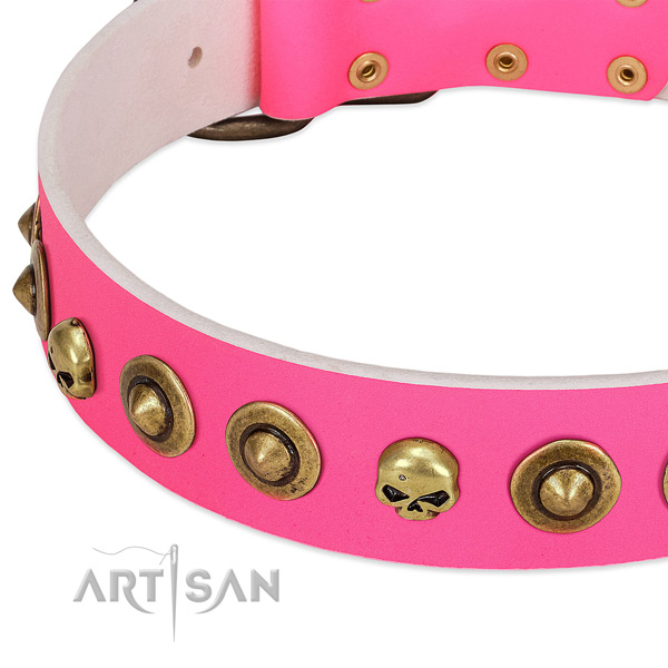 Remarkable adornments on full grain leather collar for your canine
