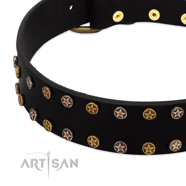 Extraordinary embellishments on natural leather collar for your doggie