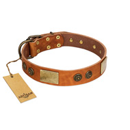"""Bronze Century"" FDT Artisan Tan Leather Dogue de Bordeaux Collar with Plates and Brooches with Cool Ornament"