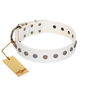 """Fresh Breeze"" FDT Artisan Elegant White Dogue de Bordeaux Collar with Silvery Studs"