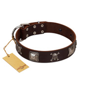 """Nut-Brown Finery"" Embellished FDT Artisan Brown Leather Dogue de Bordeaux Collar with Chrome Plated Crossbones and Plates"