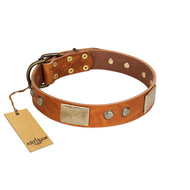 """Ancient Treasures"" FDT Artisan Tan Leather Dogue de Bordeaux Collar with Antiqued Plates and Studs"
