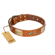 """Perfect Blend"" FDT Artisan Tan Leather Dogue de Bordeaux Collar 1 1/2 inch (40 mm) wide"