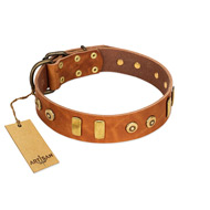 """Egyptian Script"" FDT Artisan Tan Leather Dogue de Bordeaux Collar with Plates and Small Studs"