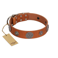 """Foxy Nature"" FDT Artisan Tan Leather Dogue de Bordeaux Collar with Chrome Plated Brooches"