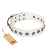 """Solar Energy"" FDT Artisan White Leather Dogue de Bordeaux Collar with Silver-like Studs and Medallions"