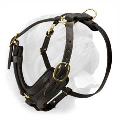 Leather Dog Harness with Brass Plated Fittings and Durable Refined Design for Walking and Training