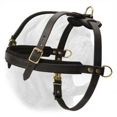 Light Weight Leather Dog Harness for Training and Walking Dogue de Bordeaux