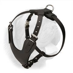 Quality Leather Dogue de Bordeaux Breed Harness for Heavy Duty Work