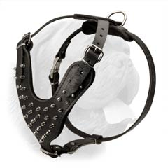 Spiked Leather Dog Harness that Helps to Avert Pressure from the Neck of a Dog