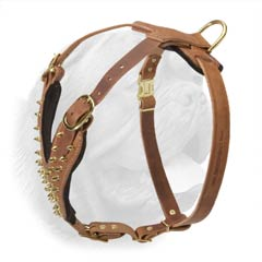 Durable walking leather harness with brass spikes