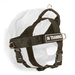 Dog Training Harness with Handle for Dogue de Bordeaux