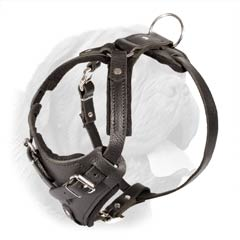 Heavy Duty Training Harness with Thick Felt Padding for Enhanced Stress Power Distribution over Dog's Chest Area