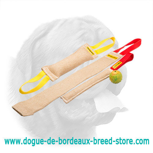 Set of Jute Bite Tugs for Dogue de Bordeaux Puppy Training