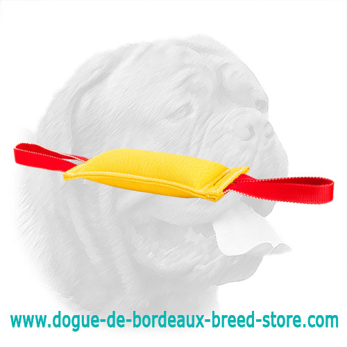 Sturdy French Linen Bite Tug for Dogue de Bordeaux Puppies