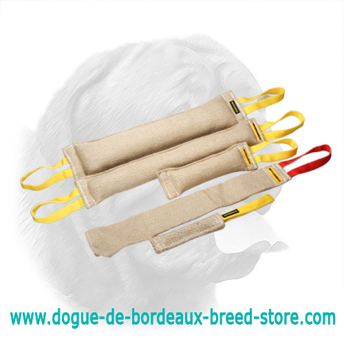 Superior Jute Training Set for Dogue de Bordeaux