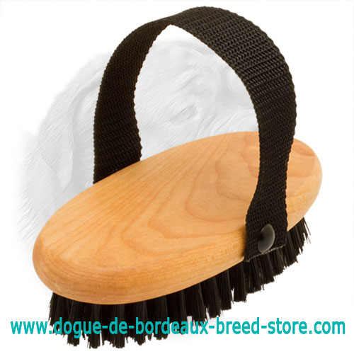 High Quality Dogue de Bordeaux Bristle Brush
