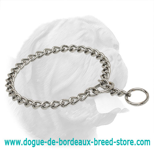 Amazing Chrome Plated Dogue de Bordeaux Choke Collar - 1/8 inch (3,5 mm)