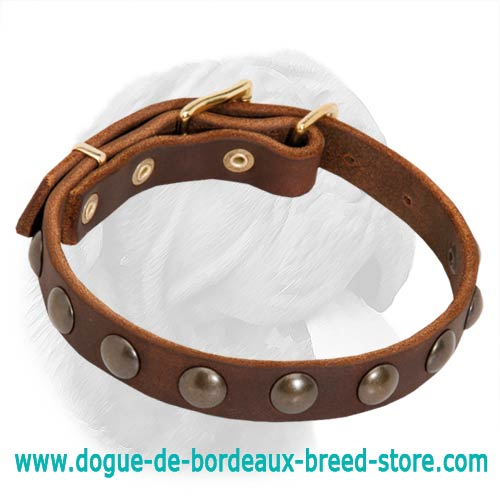 Trendy Dogue de Bordeaux Leather Collar with Brass Adornment