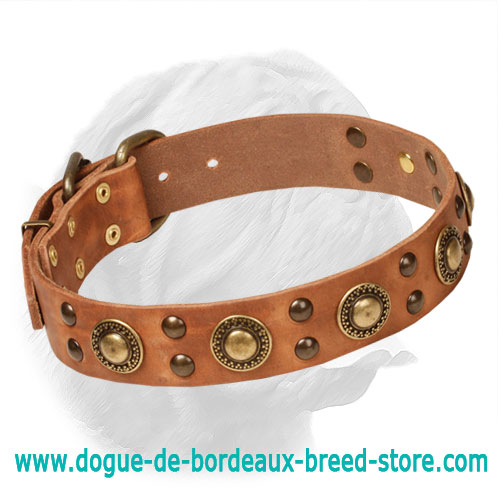 "Awesome ""Space-Like"" Dogue de Bordeaux Leather Collar"