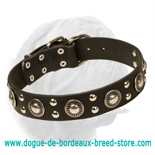 Reliable Dogue de Bordeaux Leather Collar for Trendy Dogs