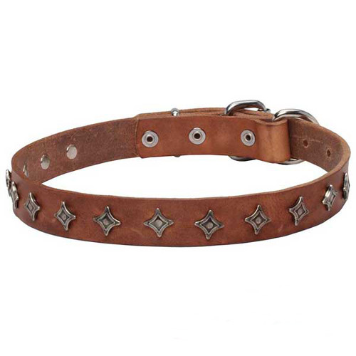 39 Interstellar 39 Narrow Leather Dogue De Bordeaux Collar