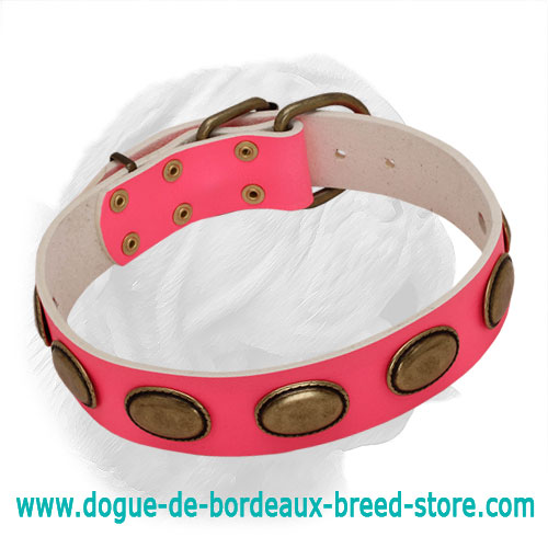 Pink Vintage Plated Female Dogue de Bordeaux Collar