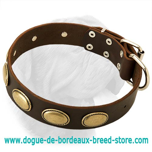 Fabulous Vintage Dogue de Bordeaux Leather Collar