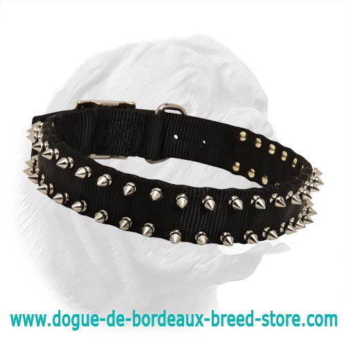 Black Nylon Spiked Dogue de Bordeaux Collar