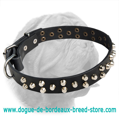 Exclusive Design Leather Dogue de Bordeaux Collar