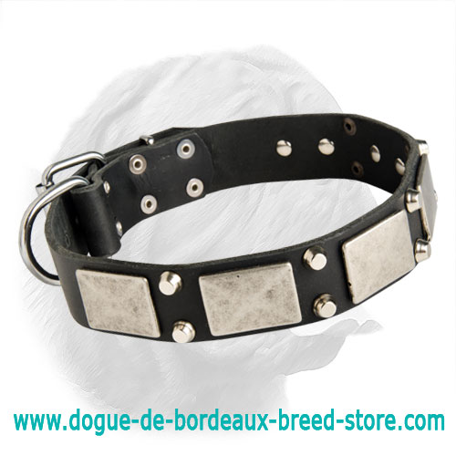 Magic Design Awesome Dogue de Bordeaux Collar