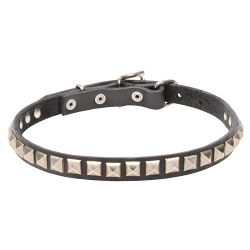 Elaborated Design Dogue de Bordeaux Collar with Chrome Plated Adornments