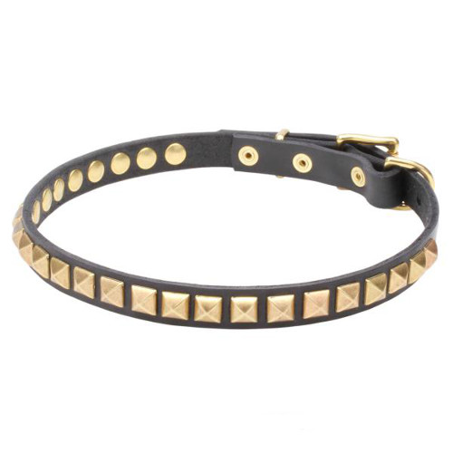 Narrow Leather Dogue de Bordeaux Collar with Brass Studs
